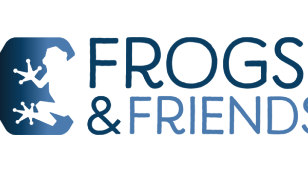 Logo von Frogs and Friends